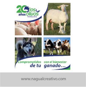 LOS OLIVOS-Diseño de publicidad-Nagual Creativo