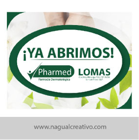 PHARMED 2-Diseño de marketing digital